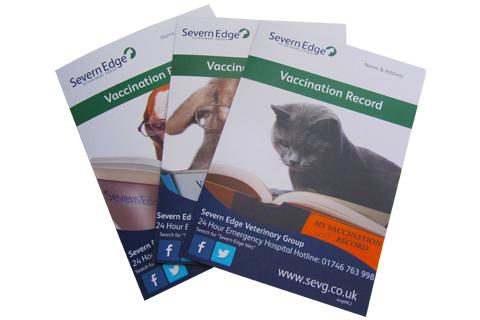 Pet Vaccination Advice | Severn Edge Vets