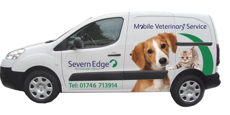 Vets in Shropshire for Pets, Equine & Farm | Severn Edge Vets