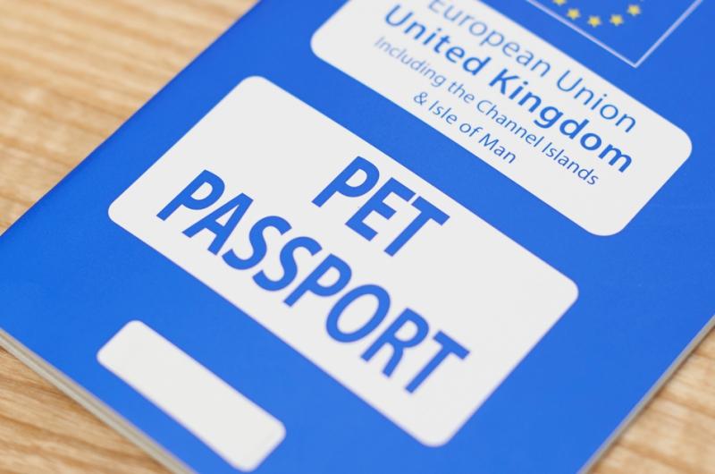 brexit pet passport
